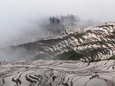 Yuanyang